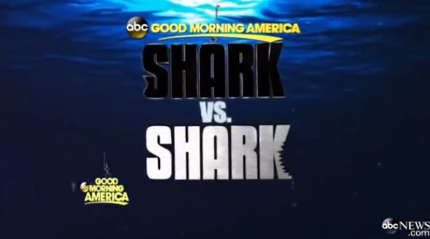 Shark vs. Shark on Good Morning America!